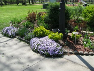 This is one of many of the flower beds at Forest Park that has been adopted by volunteers through this program. (Photo courtesy of the City of Parsons)