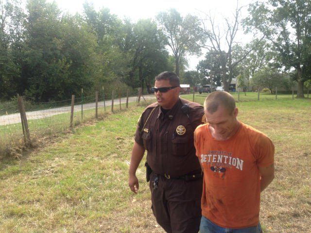 A Vernon County deputy leads teh suspect ouf of the field he ran to.